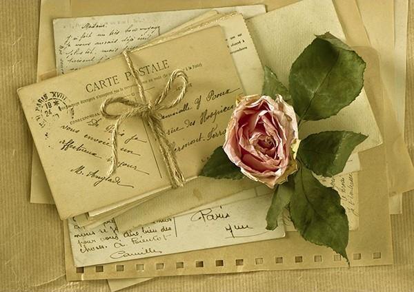 Cartes-postales-anciennes-et-rose-séchée