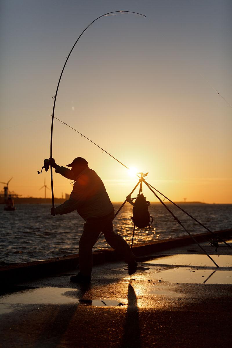 (320-365)_The_fisherman_(6163673575)